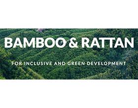 国际竹藤组织 INTERNATIONAL NETWORK FOR BAMBOO AND RATTAN(INBAR)