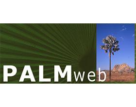 棕榈网络Palmweb