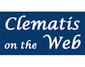 网络上的铁线莲 Clematis on the Web