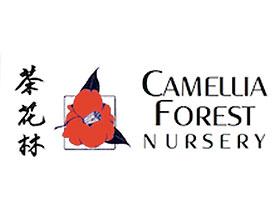 茶花林苗圃 Camellia Forest Nursery