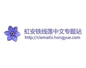 虹安铁线莲中文专题站