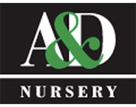 A&D苗圃 A & D Nursery