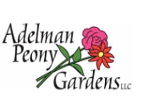 Adelman牡丹花园 Adelman Peony Gardens