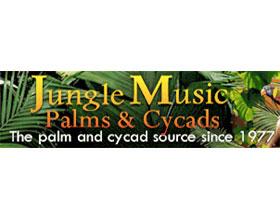 丛林音乐棕榈和苏铁苗圃 Jungle Music Palms & Cycads