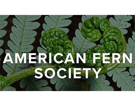 美国蕨类植物协会 American Fern Society(AFS)
