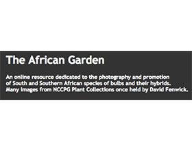 非洲花园 The African Garden