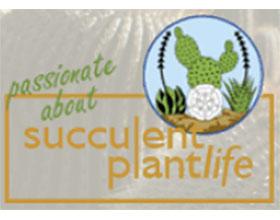 英国仙人掌和多肉植物协会 British Cactus & Succulent Society(BCSS)