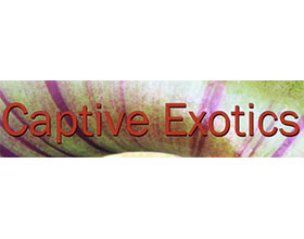 食虫植物在线苗圃 Captive Exotics online nursery