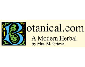 现代香草 A Modern Herbal