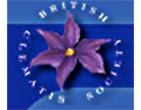 英国铁线莲协会 The British Clematis Society (BCS)