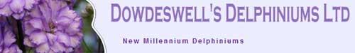 新西兰道兹韦尔飞燕草公司 Dowdeswell's Delphiniums Ltd