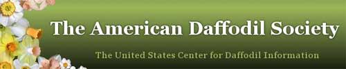 美国水仙花协会