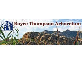 亚利桑那大学博伊斯汤普森植物园 The University of Arizona College of Agriculture and Life Sciences Boyce Thompson Arboretum