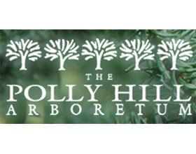 波利希尔树木园 Polly Hill Arboretum