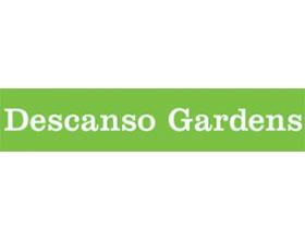 德斯坎索花园 Descanso Gardens