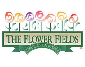 花卉田野 The Flower Fields