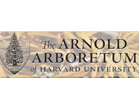 哈佛大学阿诺德植物园 Arnold Arboretum of Harvard University