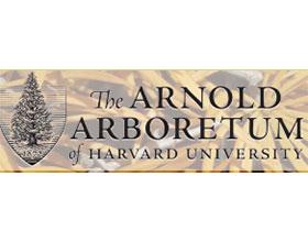 哈佛大学阿诺德植物园 Arnold Arboretum of Harvard University