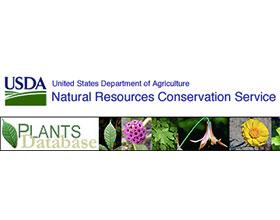 美国农业部国家植物数据库 PLANTS Database
