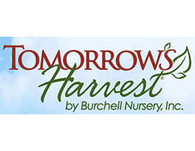 明天的收获-布柴尔苗圃, Tomorrow's Harvest Burchell Nursery
