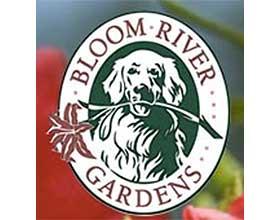布鲁姆河花园 Bloom River Gardens