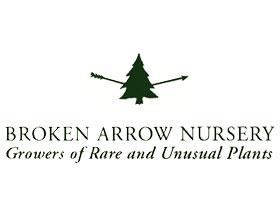 断剑苗圃 ,Broken Arrow Nursery