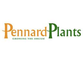 纳德植物, Pennard Plants