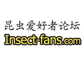 中国昆虫爱好者论坛