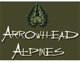 箭头高山植物苗圃 Arrowhead Alpines