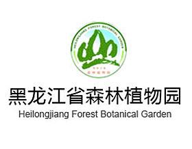 黑龙江省森林植物园 HeiLongJiang Forest Botanical Garden