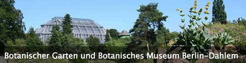 柏林植物园和植物博物馆,The Botanic Garden and Botanical Museum Berlin-Dahlem (BGBM)