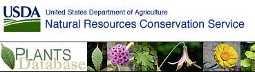 植物数据库,PLANTS Database
