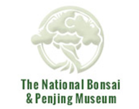 美国国家盆景基金会 The National Bonsai Foundation