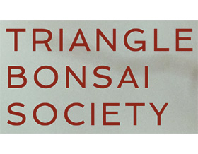 三角盆景协会 ,Triangle Bonsai Society