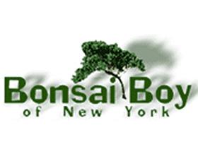 盆景男孩, Bonsai Boy