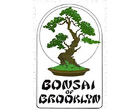 布鲁克林盆景, Bonsai of Brooklyn
