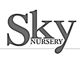 天空苗圃, Sky Nursery