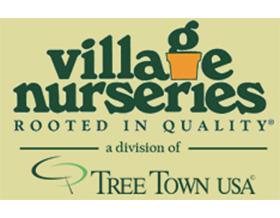乡村苗圃 Village Nurseries