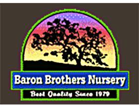 巴伦兄弟苗圃 ,Baron Brothers Nursery