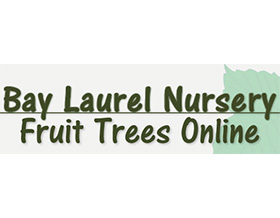 海湾月桂苗圃 Bay Laurel Nursery