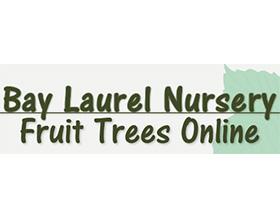 海湾月桂苗圃 Bay Laurel Nursery