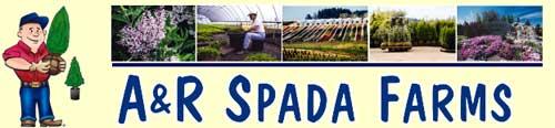 A&R斯巴达农场,A&R Spada Farms