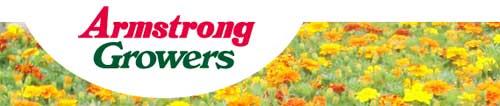 阿姆斯壮种植者,Armstrong Growers