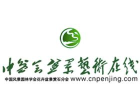 中国盆景协会盆景艺术在线
