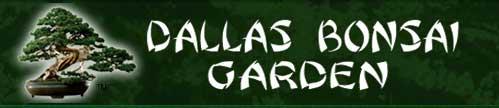 达拉斯盆景园,Dallas Bonsai Garden