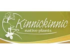 美国基尼基尼本地植物苗圃 Kinnickinnic Native Plants