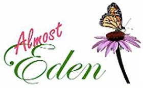 伊甸园 Almost Eden