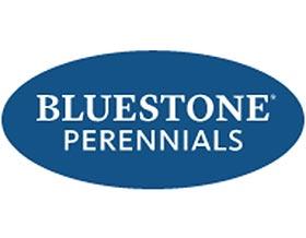 蓝石头多年生植物有限公司 Bluestone Perennials
