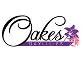 奥克斯萱草, Oakes Daylilies