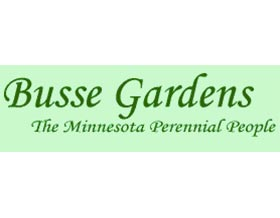 巴斯花园 Busse Gardens